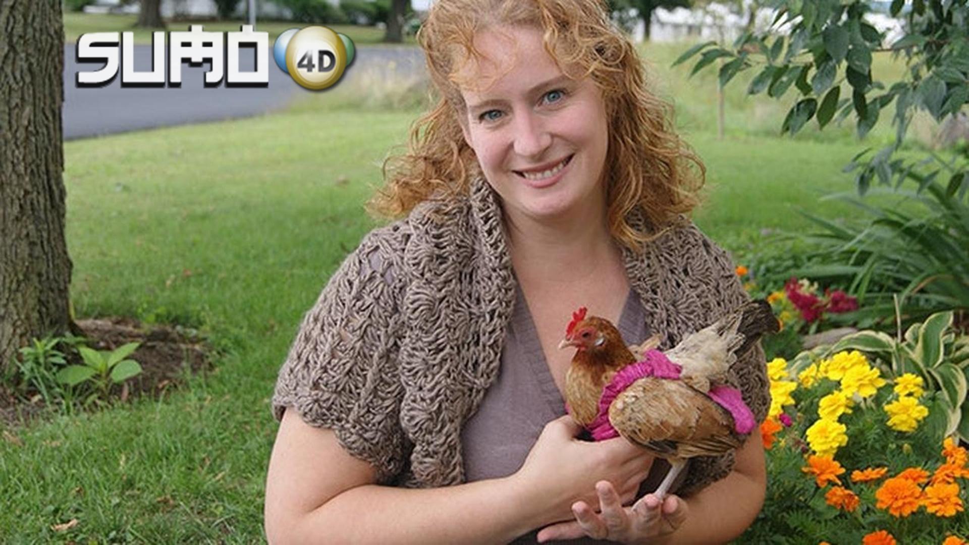 Bisnis Popok Ayam, Omsetnya Bikin Geleng Kepala