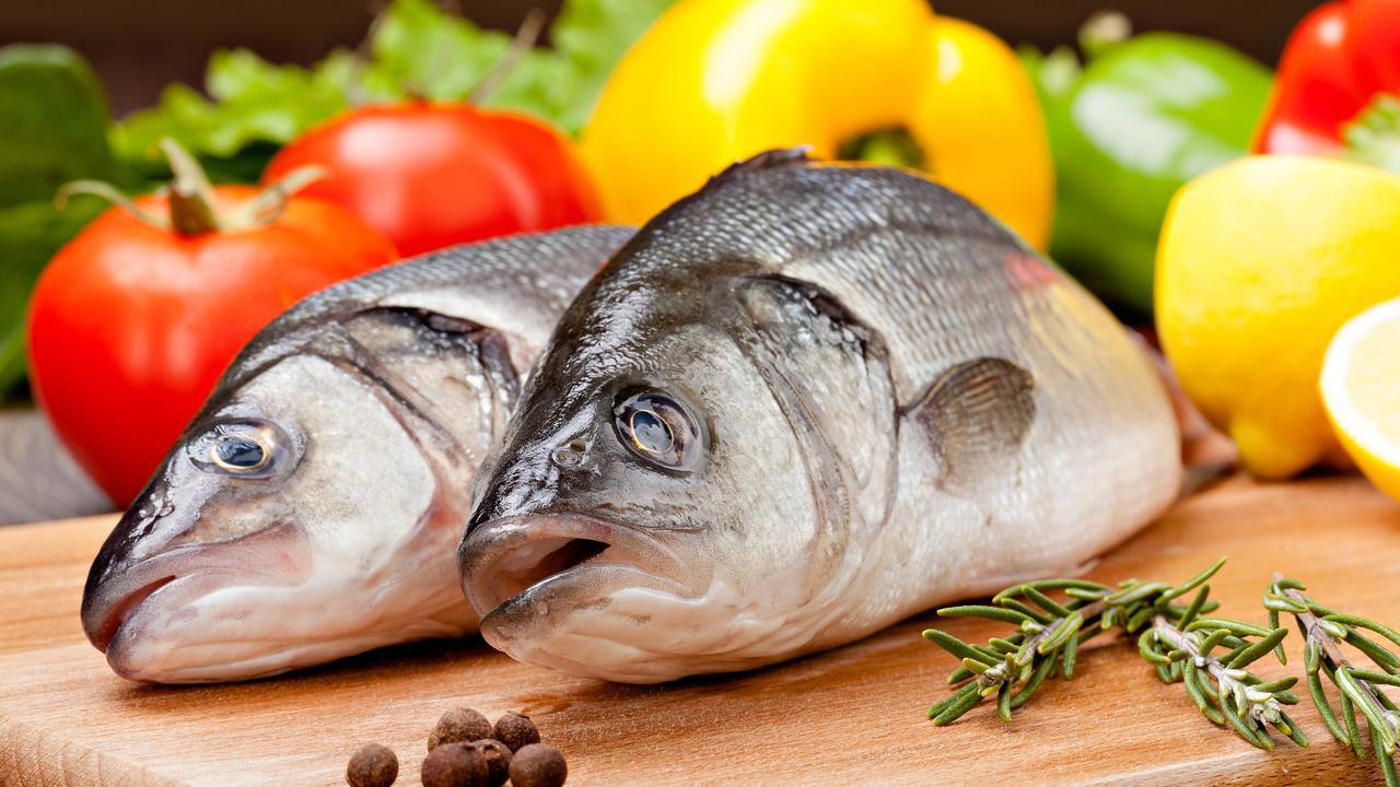 Cara Membedakan Ikan Air Laut dan Ikan Air Tawar